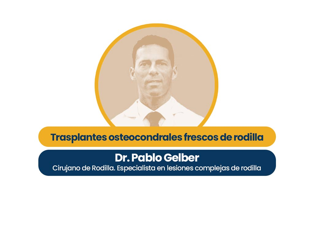 Hero Image Pablo Gelber