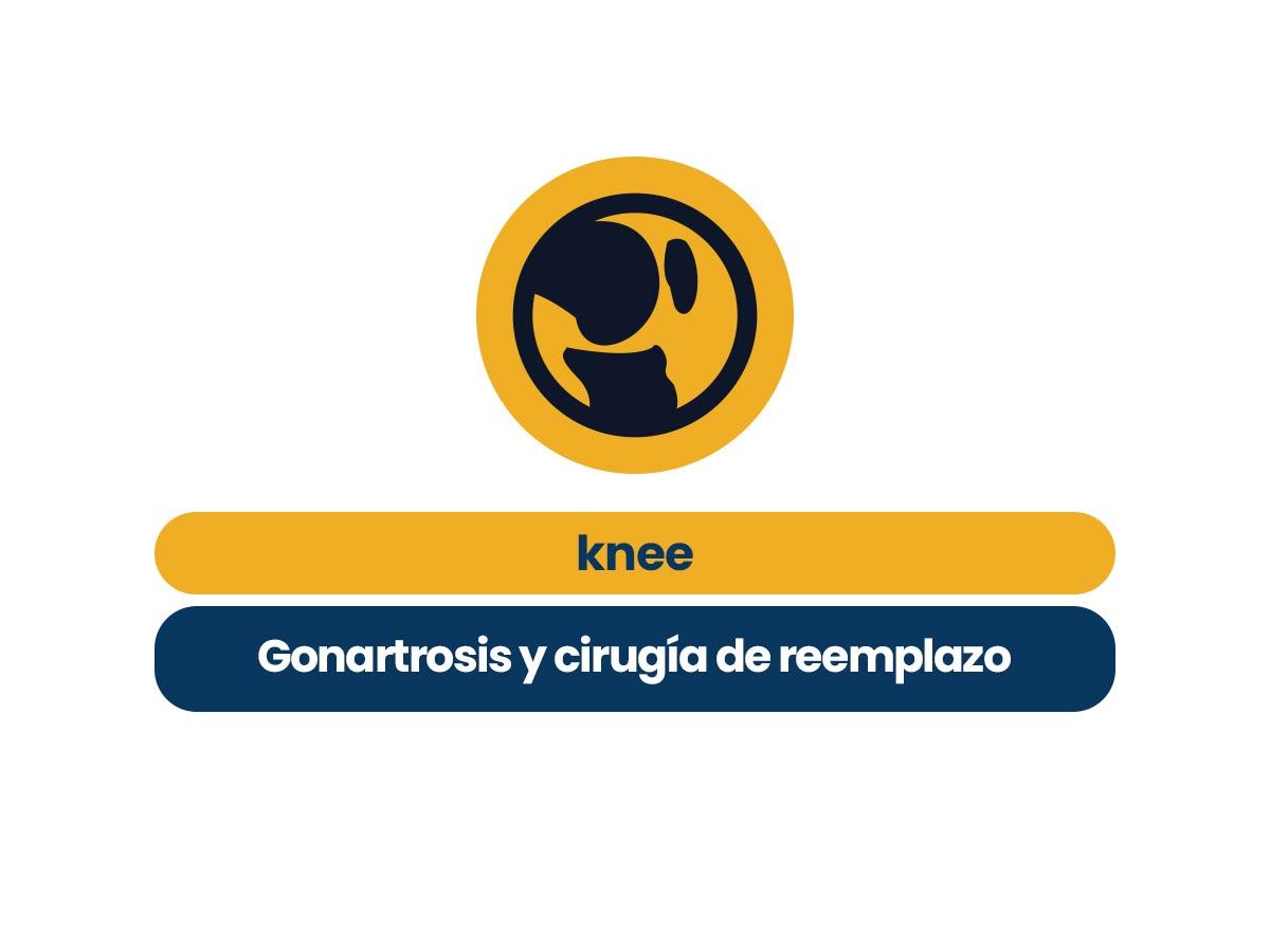 Knee: Gonartrosis y cirugía de reemplazo