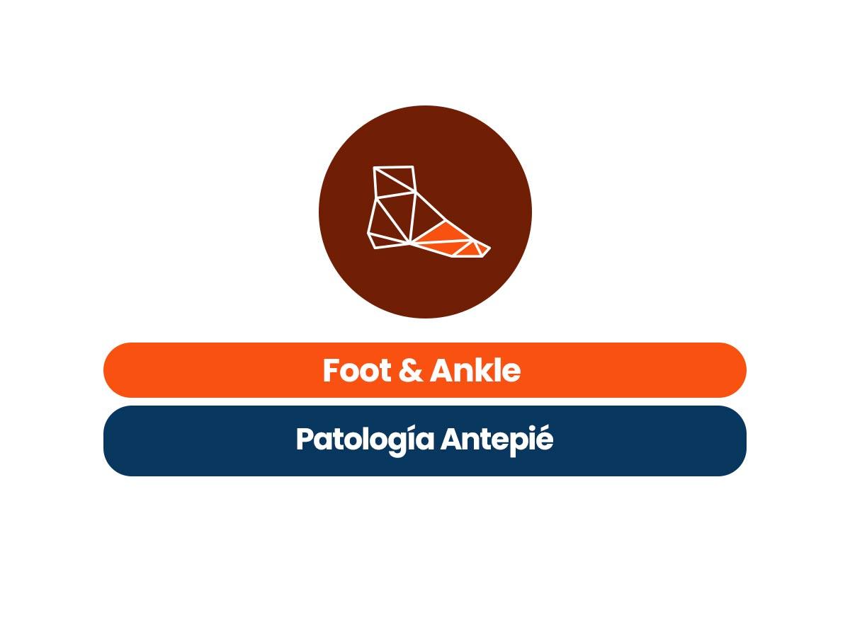 Foot & Ankle Patología de Antepié