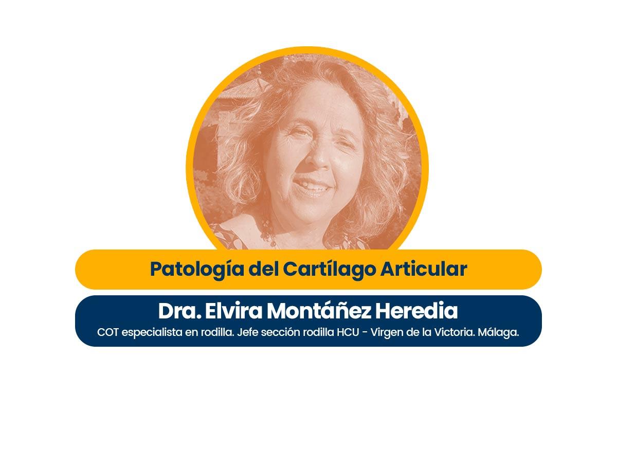Dra. Elvira Montáñez Heredia